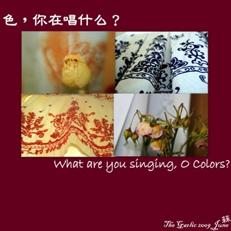 cd-cover-what-are-you-singing-o-colors